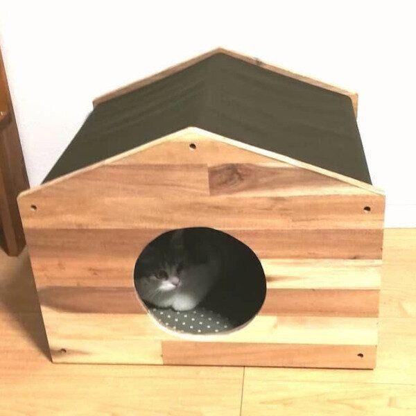 DIY猫ハウス