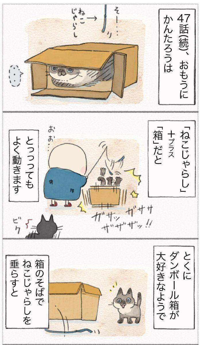 『ねこ連れ草』48話め①