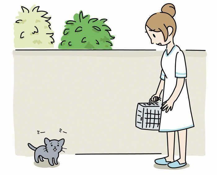 子猫と看護師さん