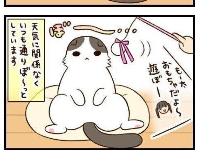 猫マンガ「もふもふスコたん」vol.12