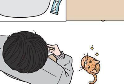 猫から近づいてきたのに、嫌な顔をされることもある【男の猫道】ねこのきもちWEB MAGAZINE限定話 vol.70