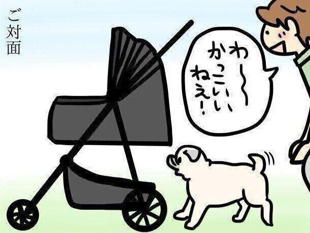 【連載】パグ犬・めー vol.113
