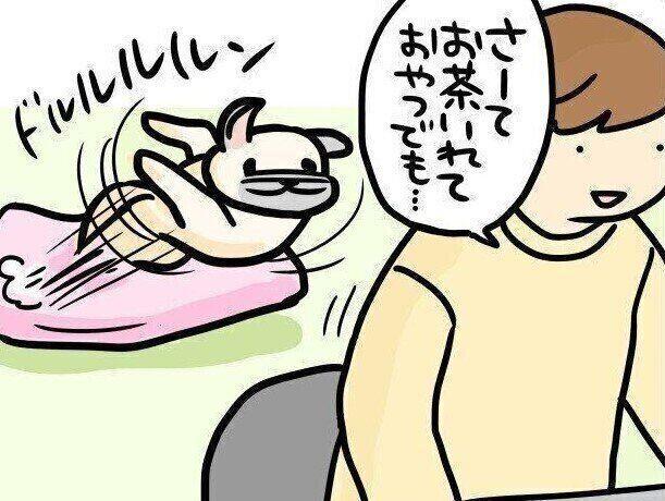【連載】パグ犬・めー vol.102
