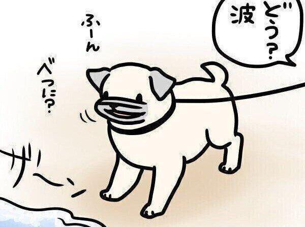 【連載】パグ犬・めー vol.107