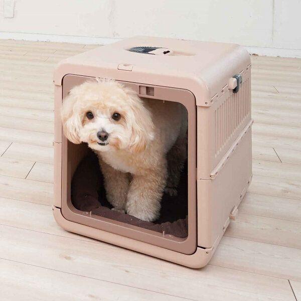 愛犬がクレート好きになる4ステップ!災害時、移動時に便利なクレートを活用しよう