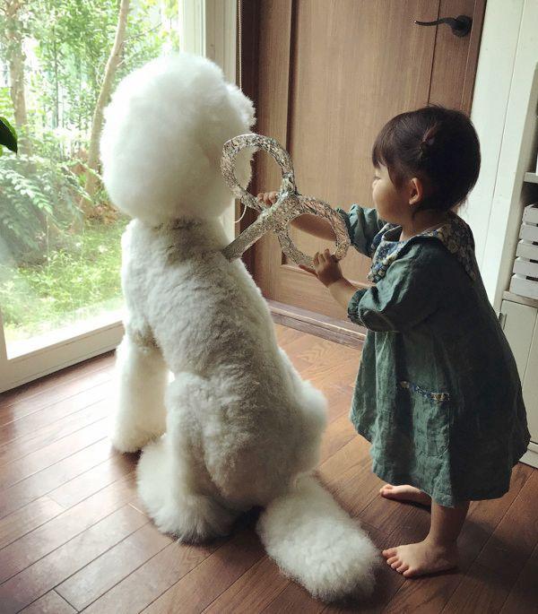 女の子にゼンマイを巻かれる犬