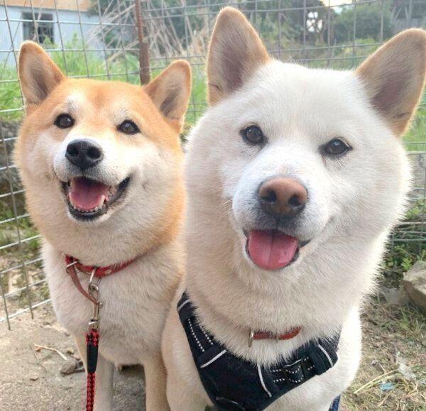 笑顔のみかんちゃんとQ太郎くん