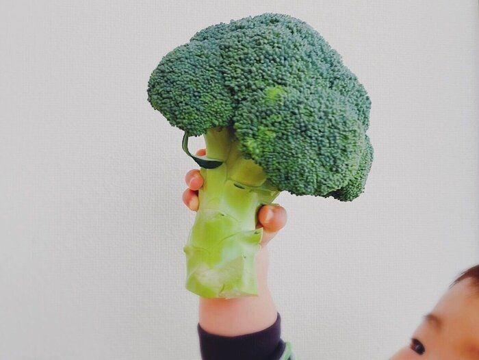 【野菜ソムリエが解説】ブロッコリーの〇〇まさか捨ててない!?